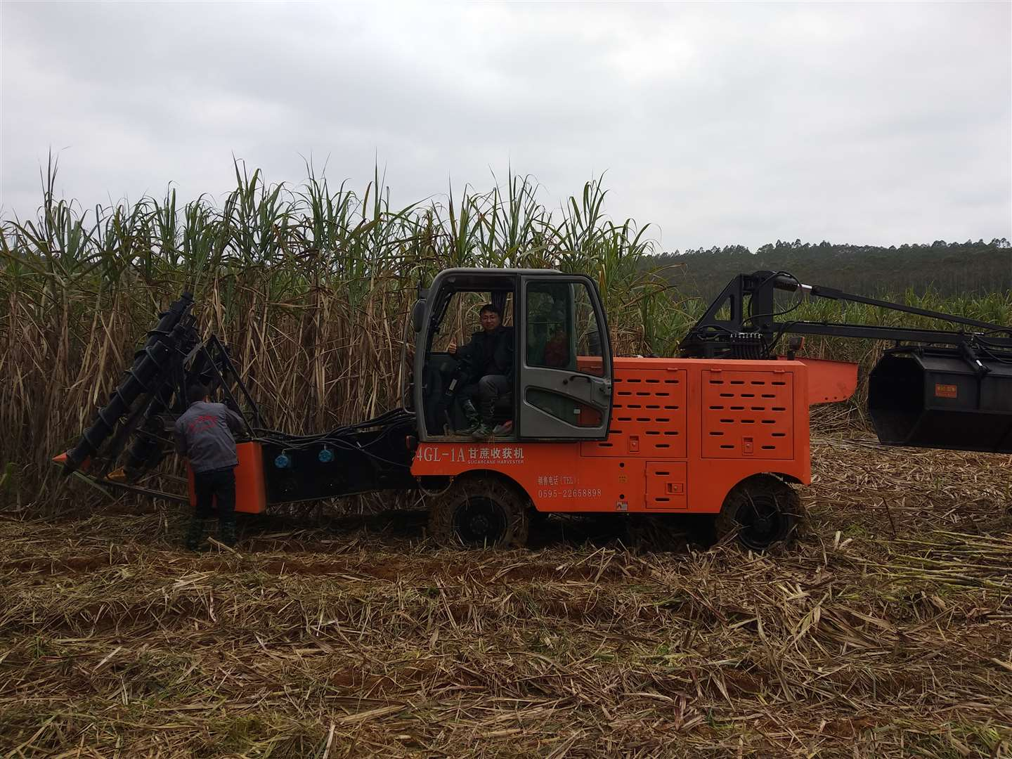JingGong 4GL-1A sugarcane harvester in Philippines