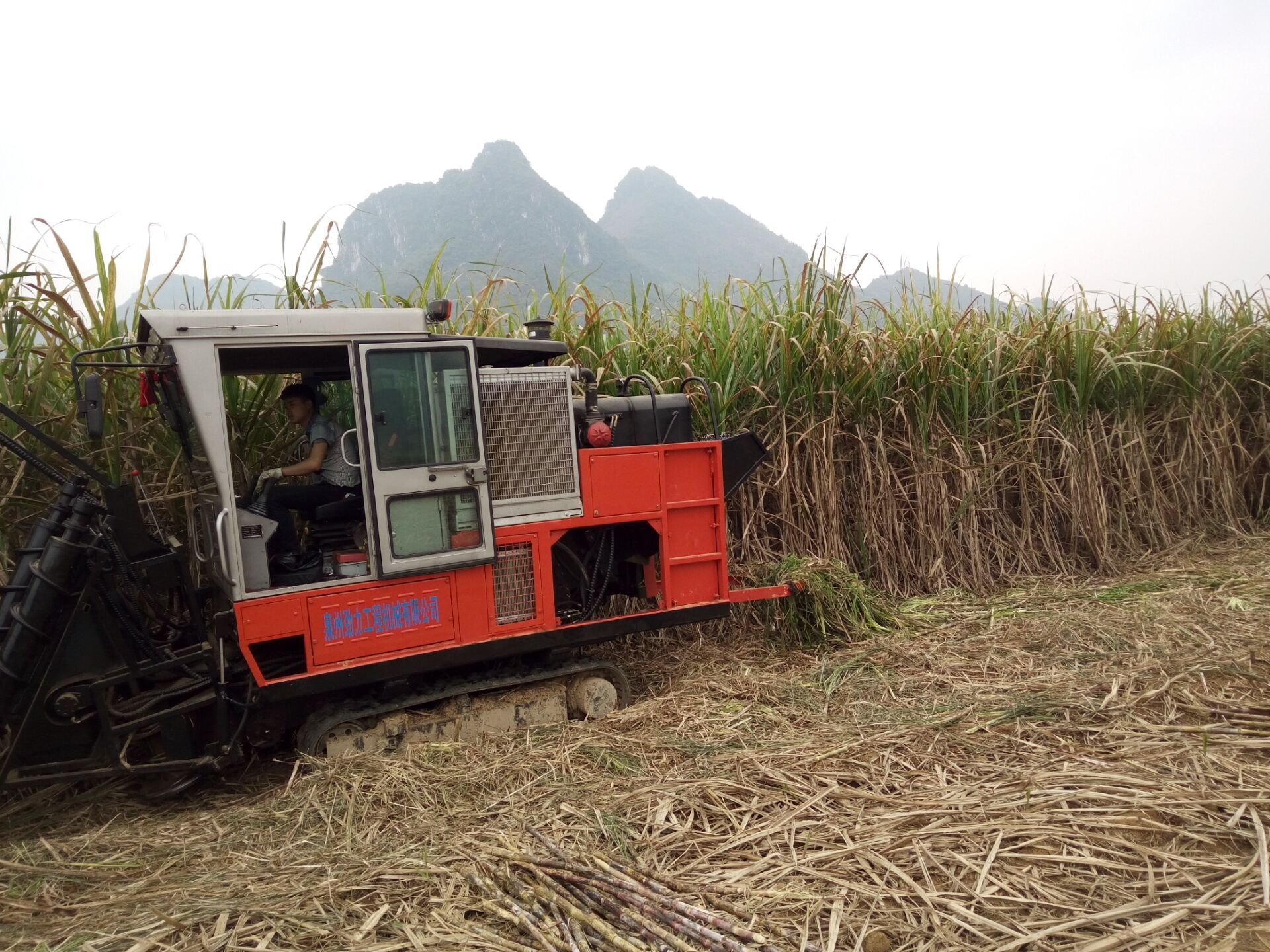 JingGong 4GL-1 sugarcane cutter machine in Philippines